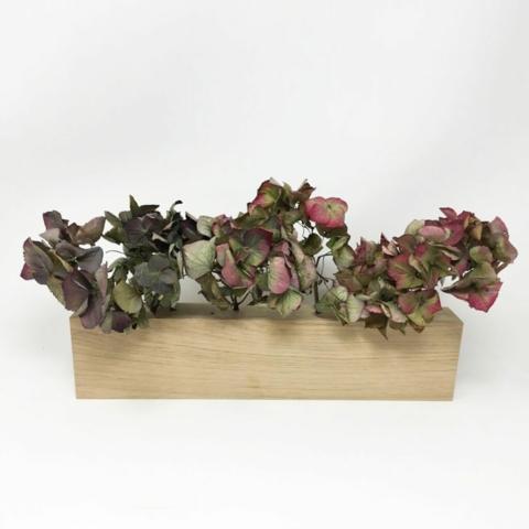 Blumenwiese Benka