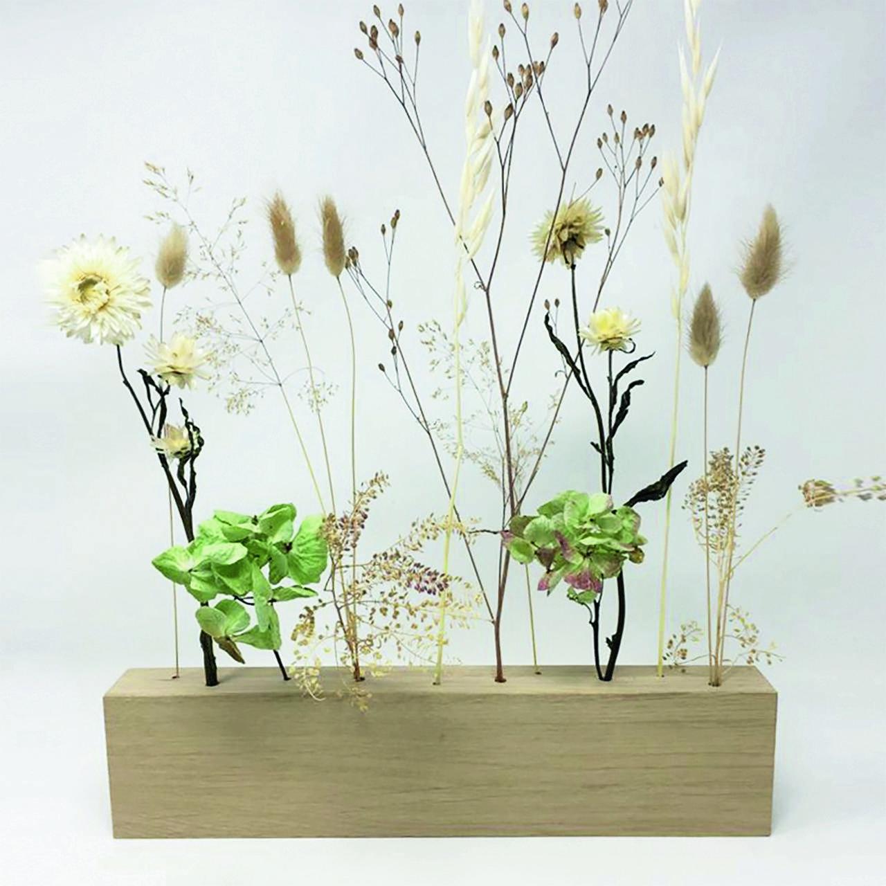 Trockenblume Blumenwiese